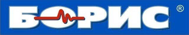 Борис logo checked